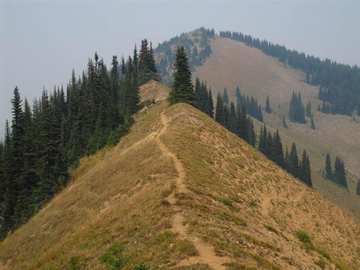 View from below Brown Peak toward Peak 6505.  South Slide Mountain (not visible) is past Peak 6505.